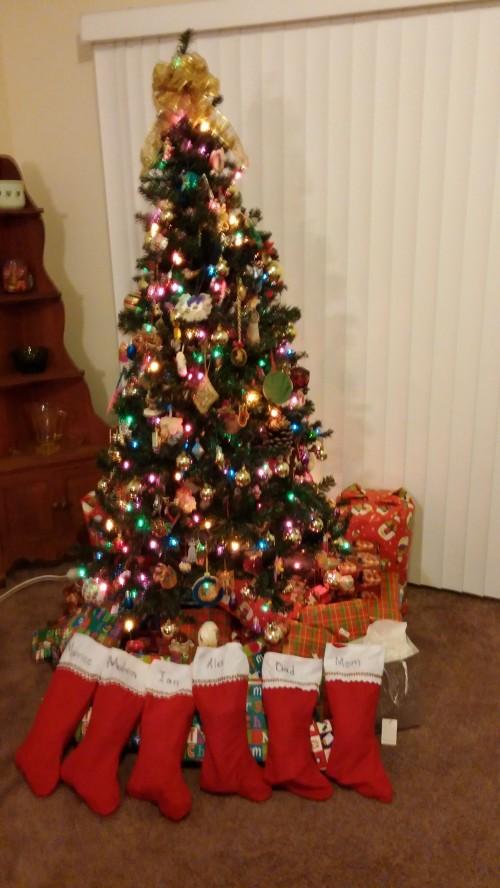 Christmas 2013 002